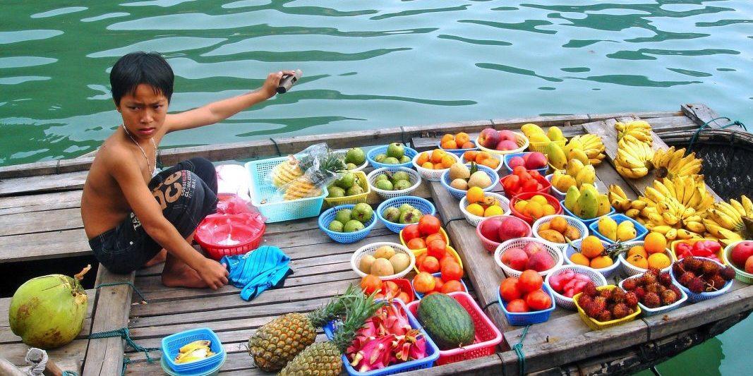 Floating Fruitseller, Halong Bay, Vietnam.