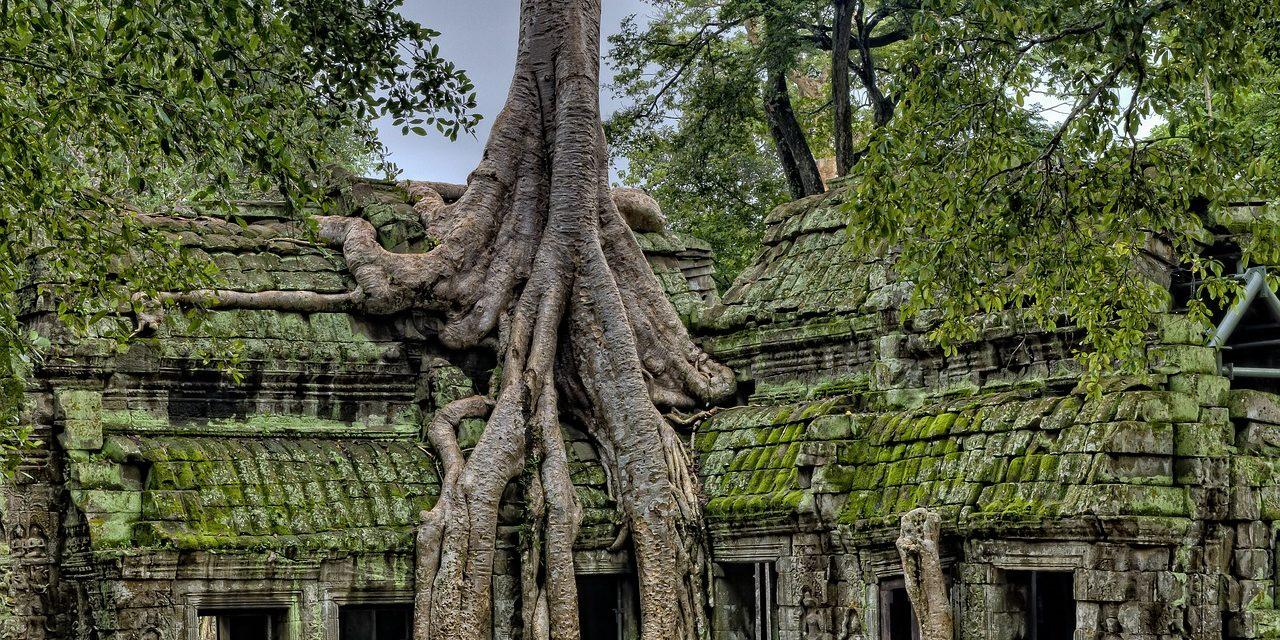 Beng Mealea, Angkor, Siem Reap, Cambodia