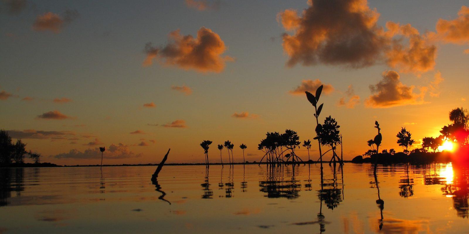 Romantic Sunrise, Mauritius